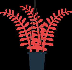 red plant illustration